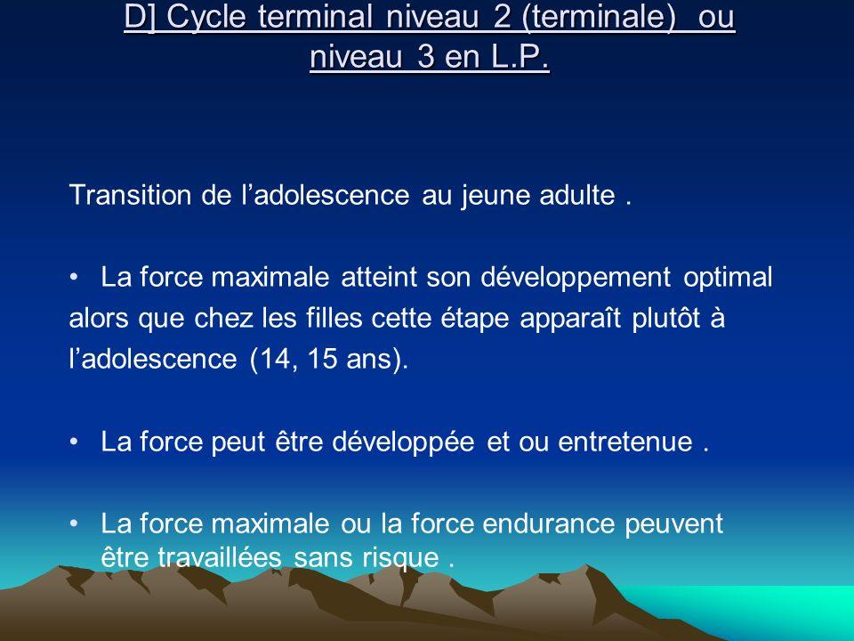 D] Cycle terminal niveau 2 (terminale) ou niveau 3 en L.P.